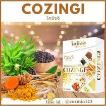 COZINGI - โคซิงจิ