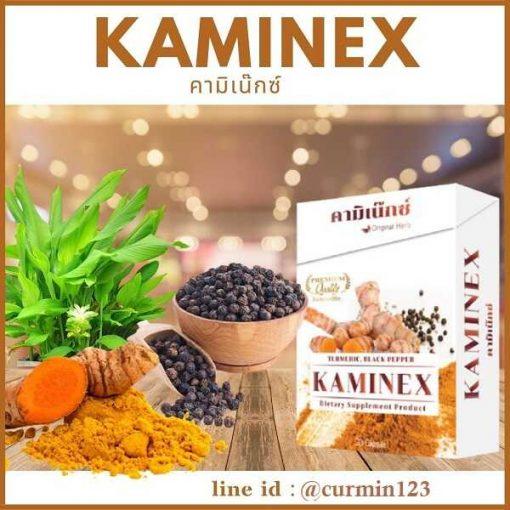 Kaminex - คามิเนกซ์